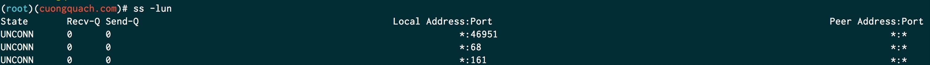 lệnh ss kiểm tra port đang mở trên linux