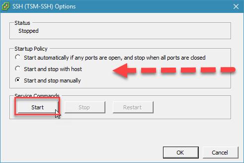 kích hoạt ssh trên esxi với vsphere desktop client - 4.5