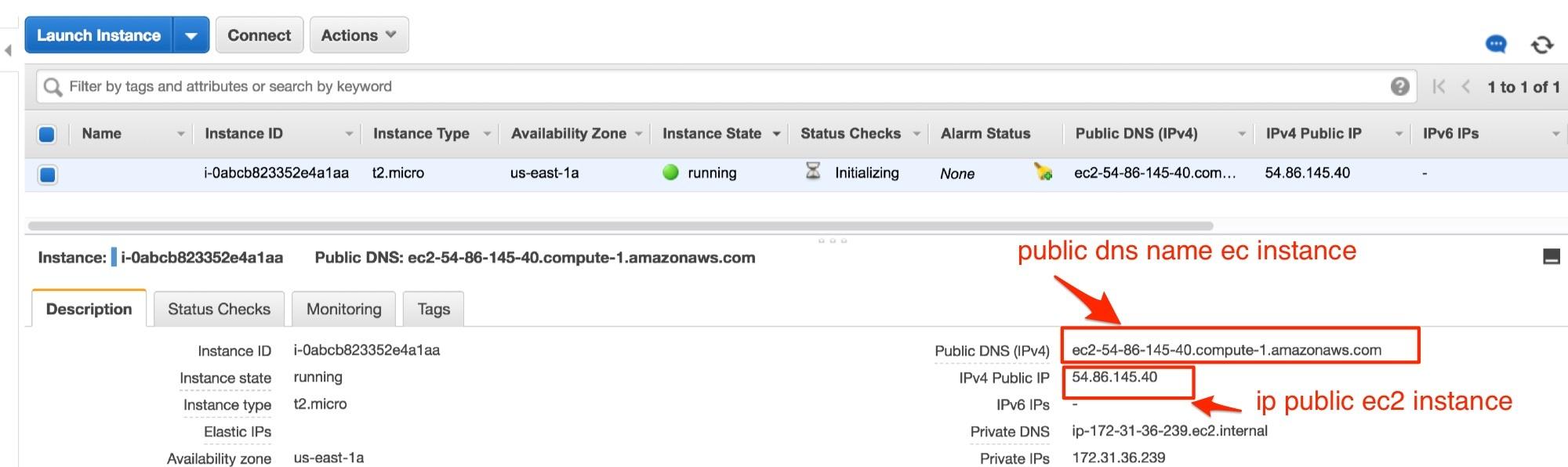 ec2 instance linux - thông tin dns name và ip public