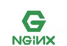 nginx-logo2