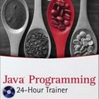 Java Programming 24-Hour Trainer PDF