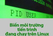 biến môi trường tiến trình đang chạy linux