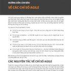 hướng dẫn căn bản về các chỉ số agile