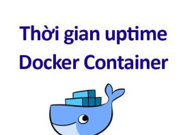 thời gian uptime docker container