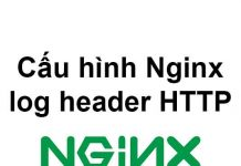 cau-hinh-nginx-log-header-http