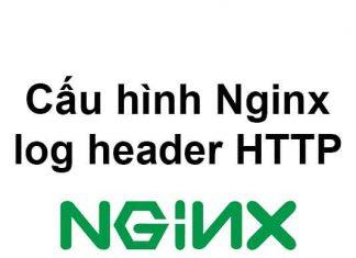 cau-hinh-nginx-log-header-http