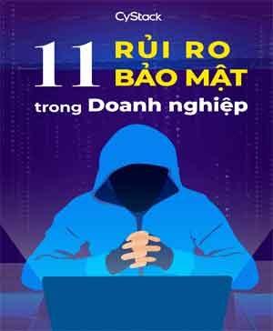 ebook-11-rui-ro-bao-mat-trong-doanh-nghiep-pdf