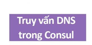 truy vấn dns trong consul