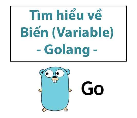 tim-hieu-ve-bien-trong-golang