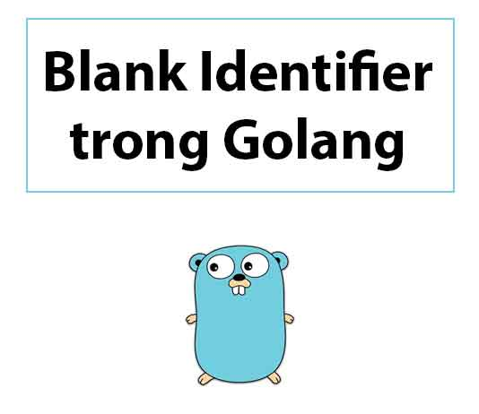 blank-identifier-trong-golang